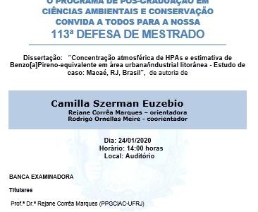 Defesa de Dissertação: Camilla Euzebio