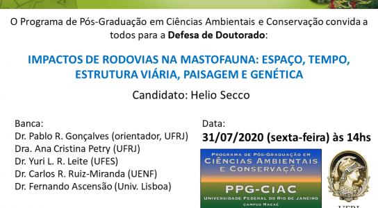 A tese de Helio Secco, a ser defendida de forma remota no próximo dia 31 de Julho, às 14hs, versa sobre a Ecologia de Estradas, uma vertente moderna e aplicada da Ecologia.