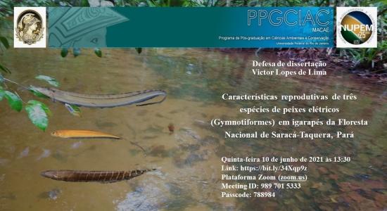 128ª Defesa de Mestrado do PPG-CiAC: Victor Lopes Lima
